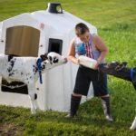 Ryan Schlies bottle feeds calves as part of is morning chores.