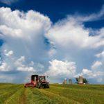 Amazing cloud as Julie Schlies harvests a field of oats.
