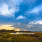 Sunrise at Horicon Marsh near Horicon, Wisconsin.