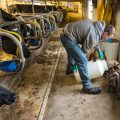 Wisconsin-Agriculture-Photogra07