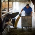 Wisconsin-Agriculture-Photogra15